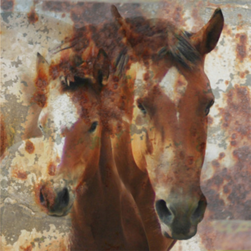 Aurelle Home Race Horse Canvas Wall Art