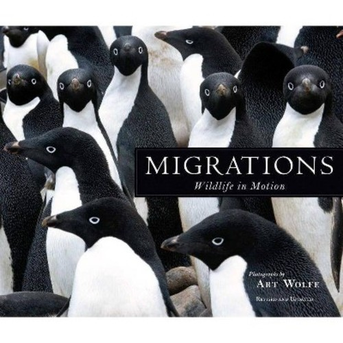 Migrations: Wildlife in Motion (Hardcover)
