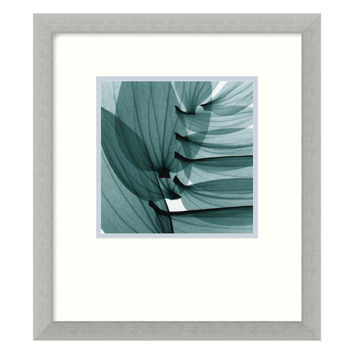 Steven N. Meyers Lily Leaves Framed Art Print