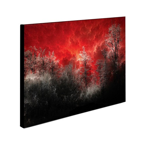Hot and Cold by Philippe Sainte-Laudy, 14x19-Inch Canvas Wall Art [14 by 19-Inch]