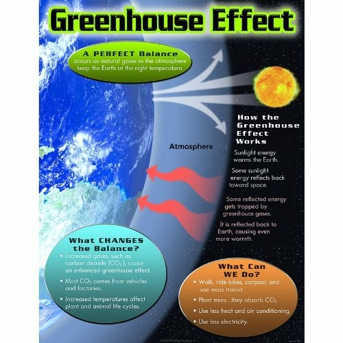 Trend Enterprises Greenhouse Effect Learning Chart (1 Piece), 17