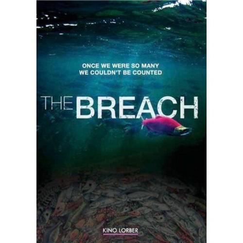 The Breach (DVD)