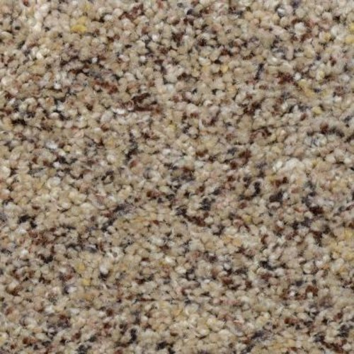 Home Decorators Collection Beach Club II - Color Monticello Texture 12 ft. Carpet