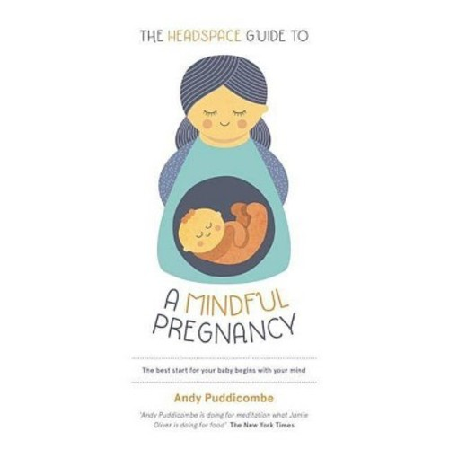 Headspace Guide to a Mindful Pregnancy (Paperback) (Andy Puddicombe)