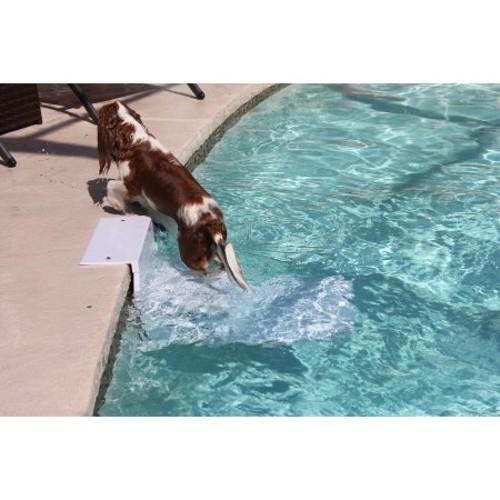 PoolPup Steps, 4 to 150 lbs