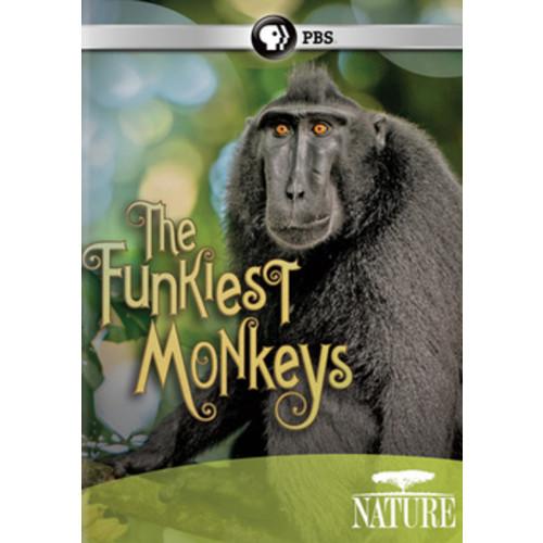 Nature: The Funkiest Monkeys (DVD)