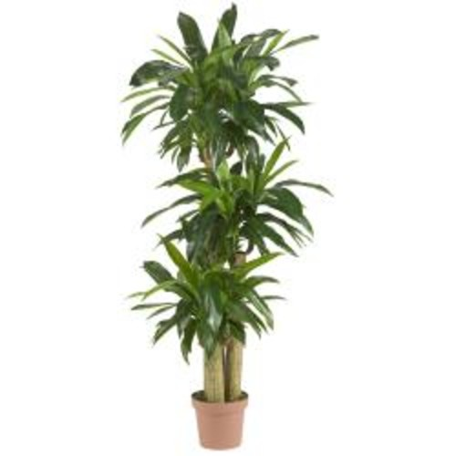 Corn Stalk Dracaena 62-inch 'Real Touch' Silk Plant