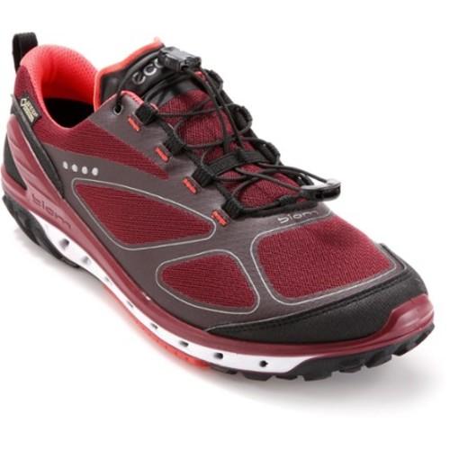 Biom Venture GTX Hiking Shoes - Women's