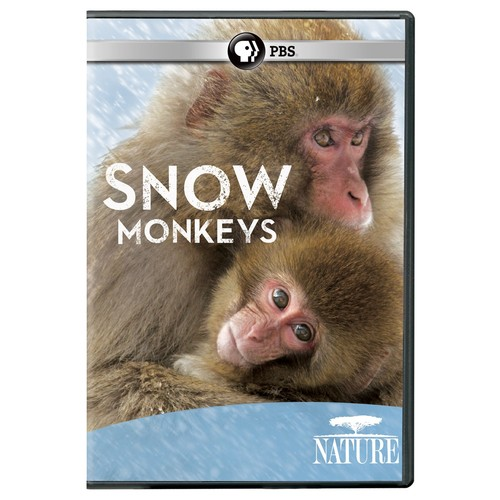 Nature: Snow Monkeys: .: Movies & TV