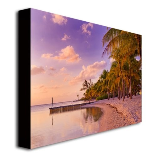 Cayman Beach Full by Preston, 18x24-Inch Canvas Wall Art [18x24-Inch]