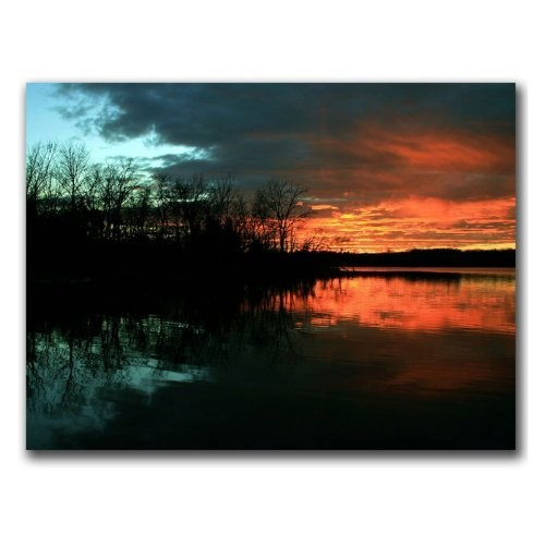 Life by CATeyes, 14x19-Inch Canvas Wall Art [14 by 19-Inch]