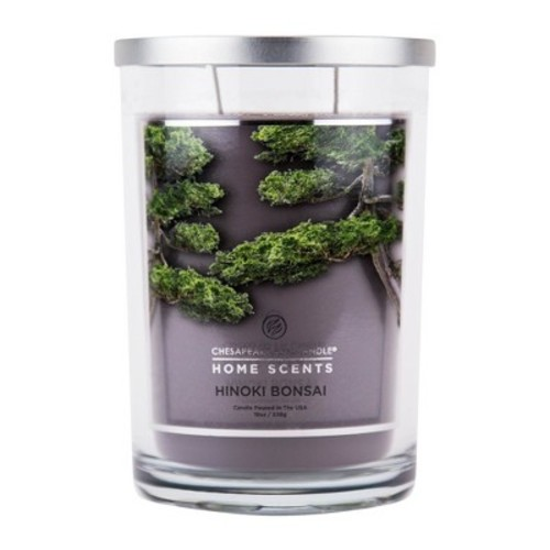 Jar Candle Hinoki Bonsai 19oz - Chesapeake Bay Candles Home Scents