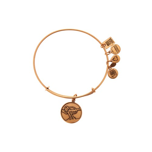 Team USA Skiing Charm Expandable Wire Bangle