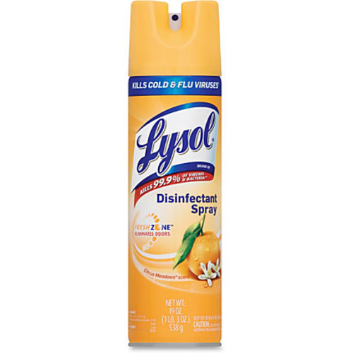 Lysol Citrus Disinfectant Spray - Aerosol - 0.15 gal (19 fl oz) - Citrus Meadow Scent - 12 / Carton - Clear