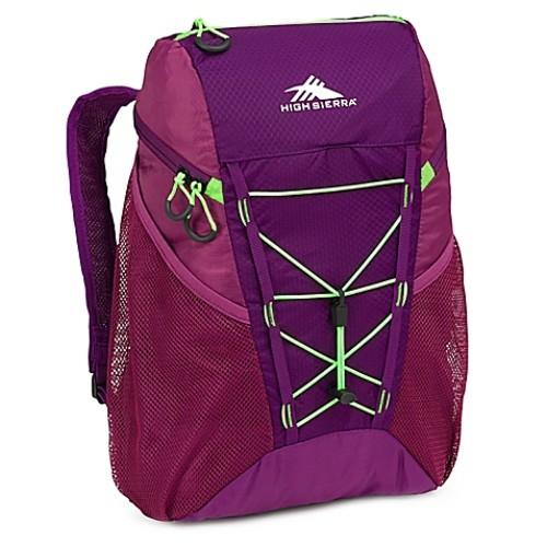 High Sierra Pack-N-Go 18-Liter Packable Backpack in Purple