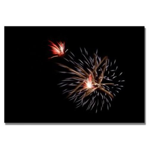 Trademark Fine Art 'Abstract Fireworks 32' 18