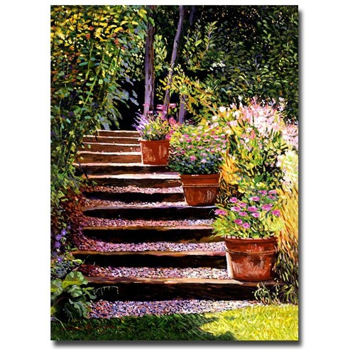 David Lloyd Glover 'Pink Daisies Wooden Steps' Canvas Art
