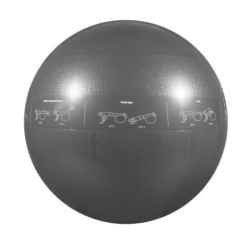 GoFit Professional Stability Ball [Silver, 75cm]