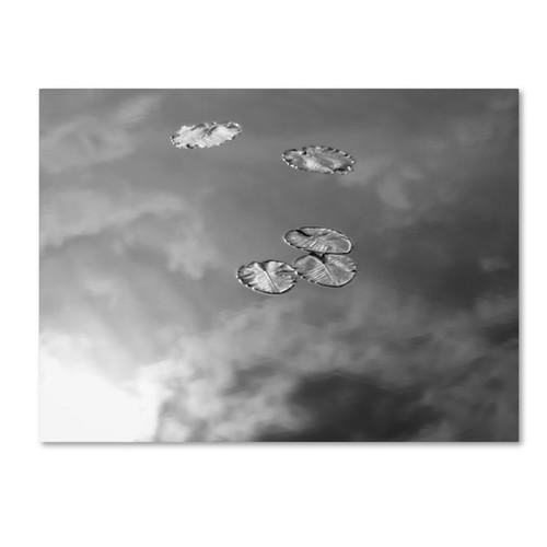 Trademark Fine Art 'Lily Pads & Sky' 35