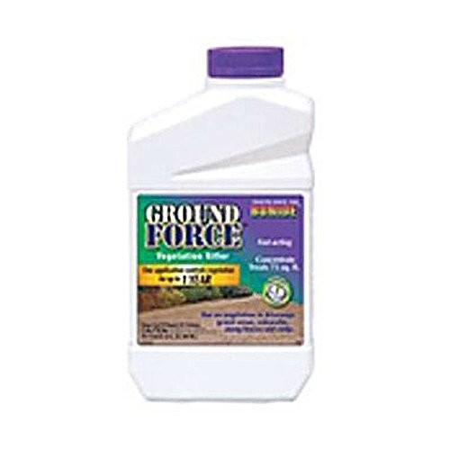 Bonide 5121 Concentrate Ground Force Weed Killer, 32-Ounce [1]