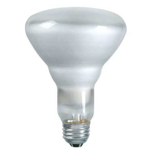 Philips DuraMax 65-Watt Incandescent BR30 Indoor Flood Light Bulb (12-Pack)