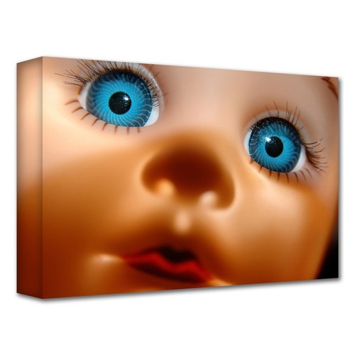 Dan Holm 'Curious' Gallery-Wrapped Canvas
