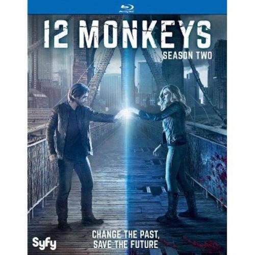 12 Monkeys: Season Two (Blu-ray Disc)