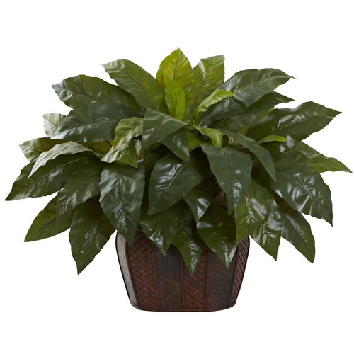Nearly Natural Giant Birds-Nest Fern with Decorative Planter