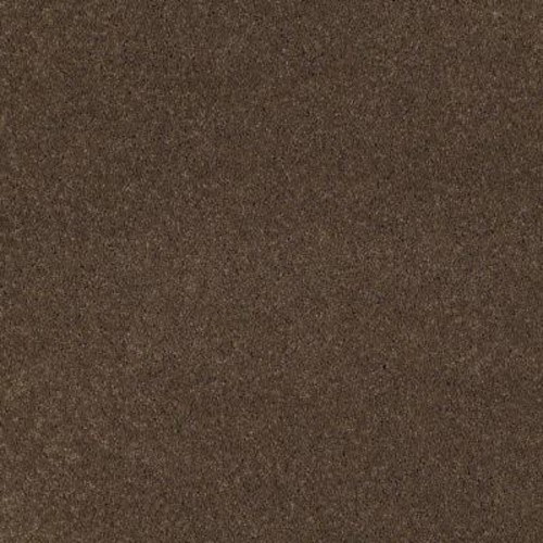 SoftSpring Carpet Sample - Tremendous I - Color Oakwood Texture 8 in. x 8 in.