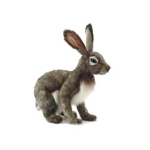 Hansa Jack Rabbit