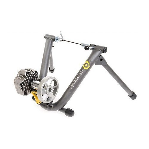 CycleOps Fluid Bike Trainer : Bike Trainers : Sports & Outdoors [Fluid2 Trainer, One Size]
