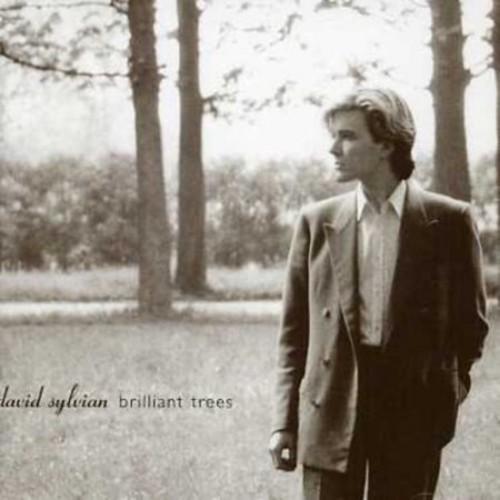 Brilliant Trees [CD]