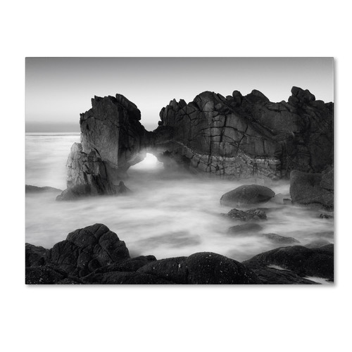 Trademark Global Moises Levy 'Gate' Canvas Art [Overall Dimensions : 24x32]