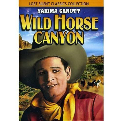 Wild Horse Canyon [DVD] [English] [1925]