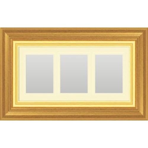 PTM Images Hanging Trio Picture Frame