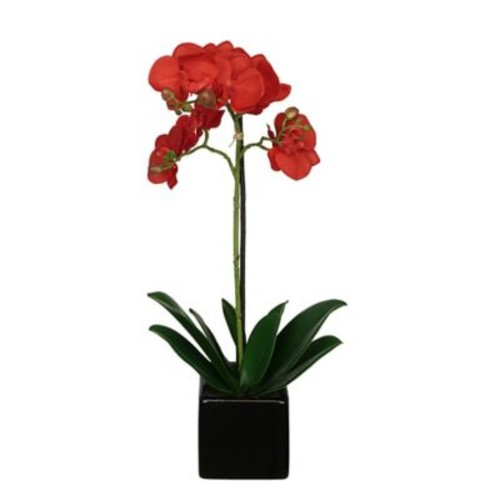 House of Silk Flowers Artificial Baby Cube Ceramic Orchid Flowers in Pot (Set of 2); Red