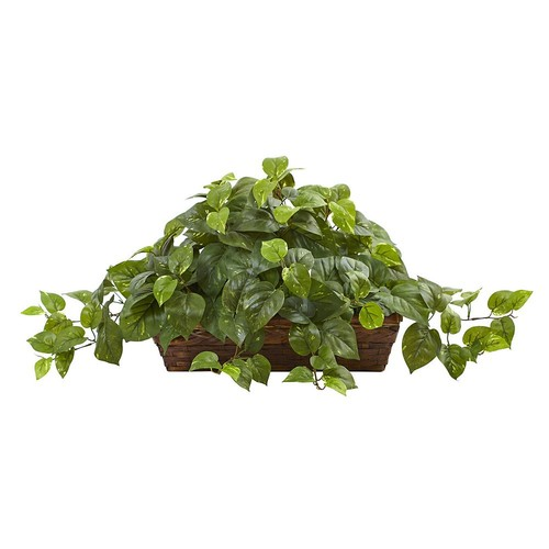 Nearly Natural Pothos with Ledge Basket, Green [Green]