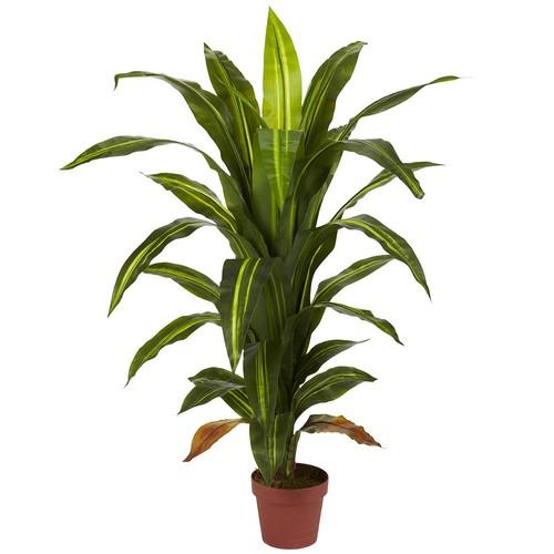 4' Dracaena Silk Plant