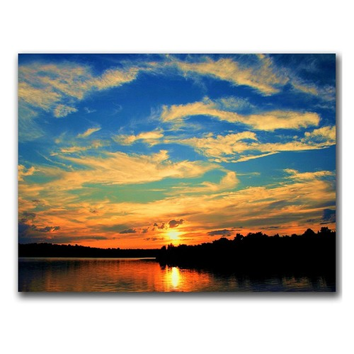 Touch the Wind by CATeyes, 14x19-Inch Canvas Wall Art [14 by 19-Inch]