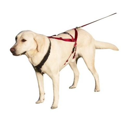 Ultra Paws One Harness for Dogs