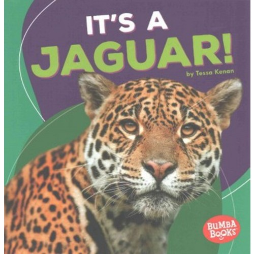 It's a Jaguar! (Paperback) (Tessa Kenan)
