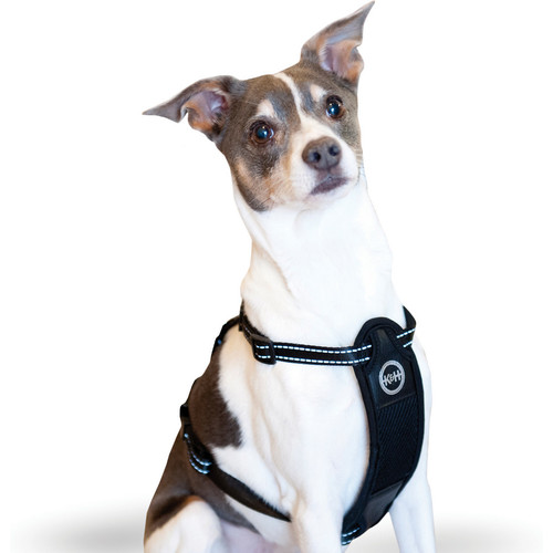 K&H Pet Products Travel Safety Dog Harness [Small]