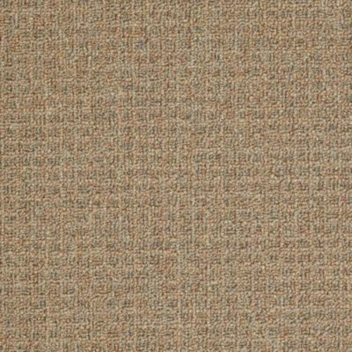 TrafficMASTER Burana - Color Copper Penny 12 ft. Carpet