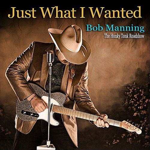Just What I Wanted [CD]