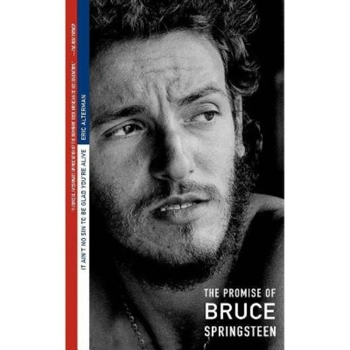 It Ain't No Sin to Be Glad You're Alive: The Promise of Bruce Springsteen (Paperback)
