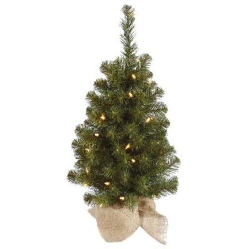 Vickerman Felton 2.5' Green Pine Artificial Christmas Tree w/ 50 Clear Lights