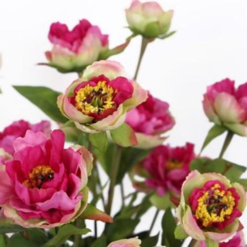 Winston Porter Silk 3 Princess Bloom Peony Stem; Pink