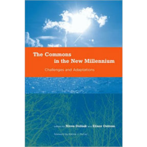 The Commons in the New Millennium: Challenges and Adaptation / Edition 1