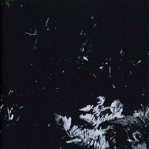 Mamiffer/Oakeater [Split CD] [LP] - VINYL