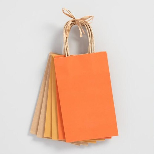 Small Orange Kraft Gift Bags Set of 6
